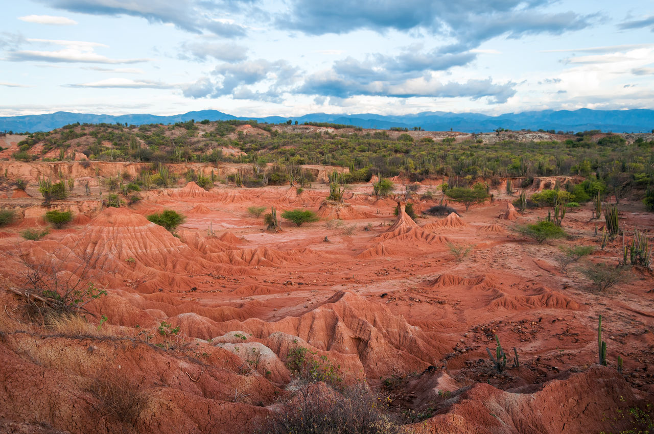 Beautiful red and green landscape of Tatacoa Desert, Colombia Blue Colombia Desert Desolate Dry Heat Hills Hot Landscape Nature Neiva Outdoors Pillar Red Rock Sand Scenic Sky Stone Tatacoa Tourism Travel Valley View Wild
