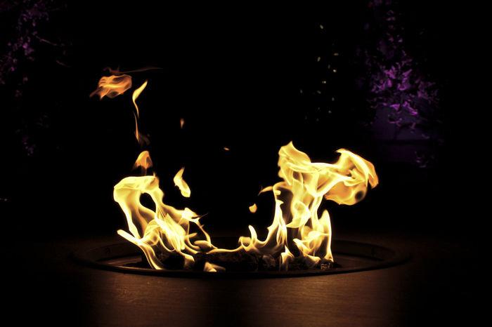 Cleveland Cleveland Botanical Garden Firepit Flames Night Lights Nightphotography Burning Close-up Diya - Oil Lamp Fire Fire - Natural Phenomenon Flame Heat - Temperature Illuminated Night No People