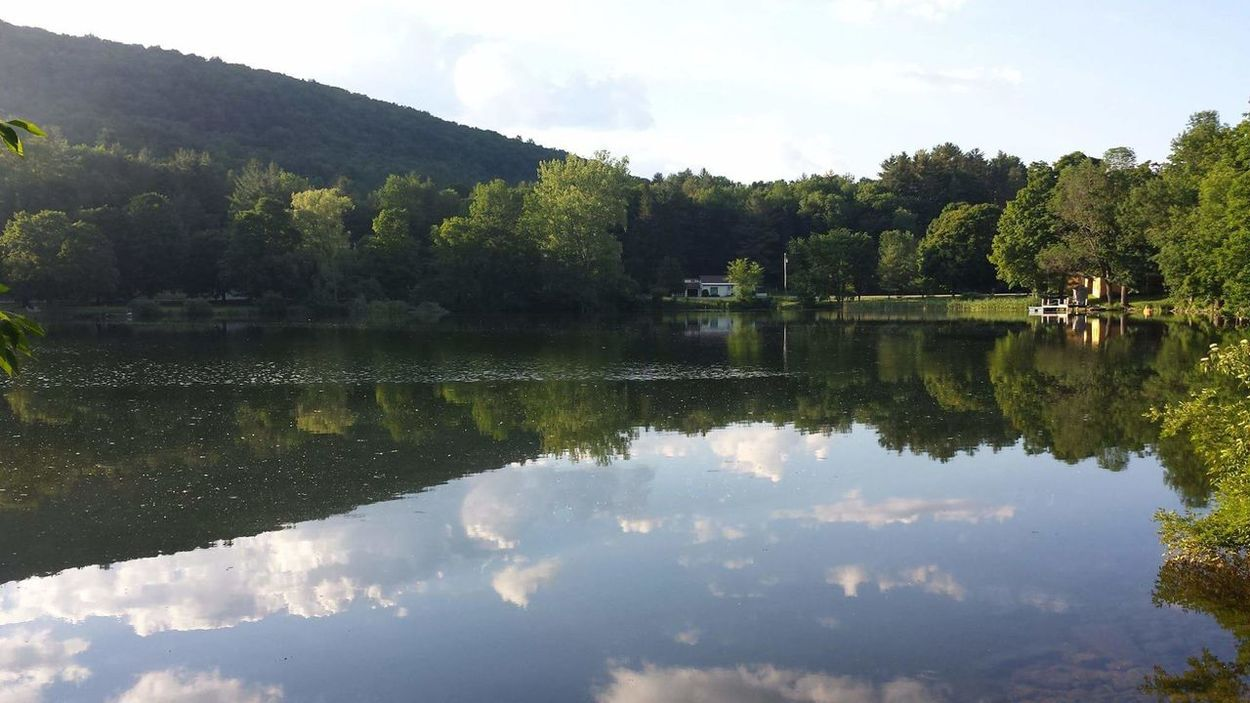 On The Pond Water Reflections Placid  Serenity Green Mountain State Clouds