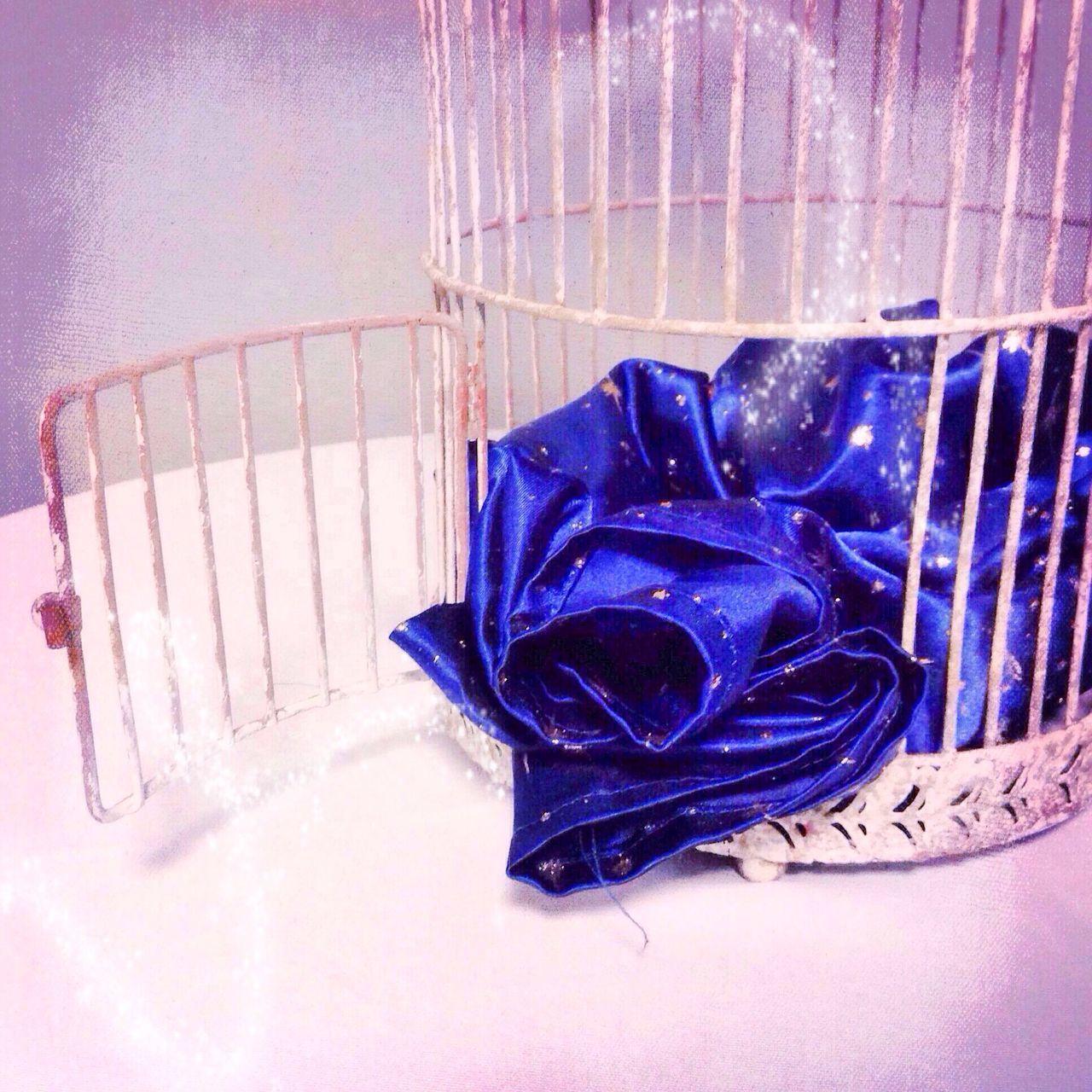 Beautiful stock photos of magic, Bird Cage, Blue, Cloth, Digitally Generated Image