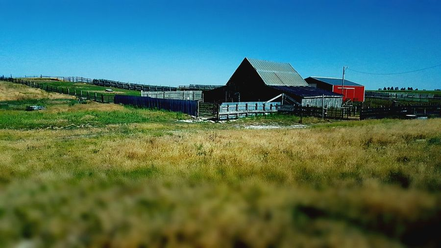Ranch in Wyoming North Of Lusk Old And New Barns Beautiful Summer Morning United States Out In The Country Clear Blue Sky