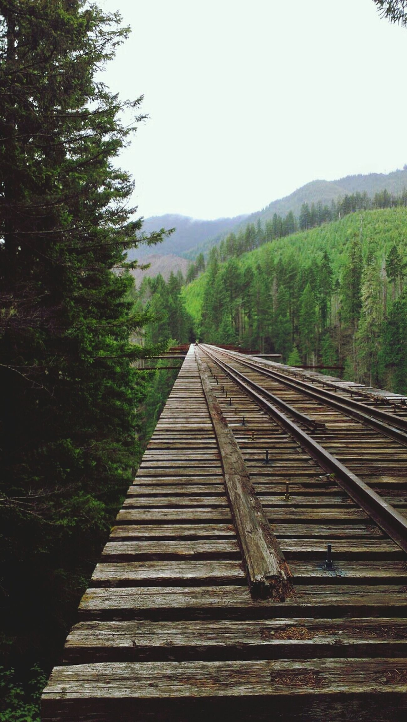 Vance Creek Bridge Travel Washington PNW Pnwbridge