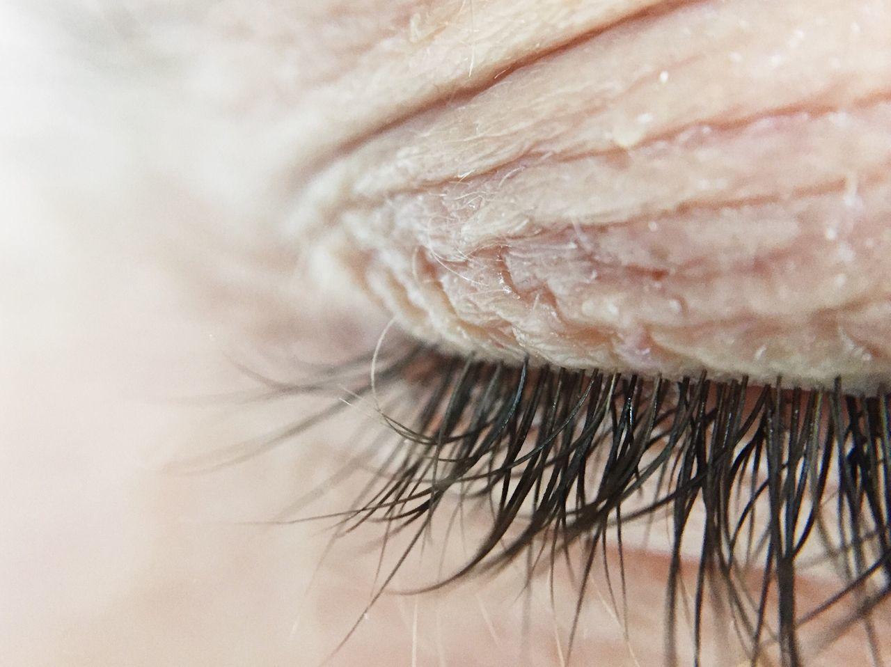 Human iris Iris human eye detail close-up Fresh on Market 2017