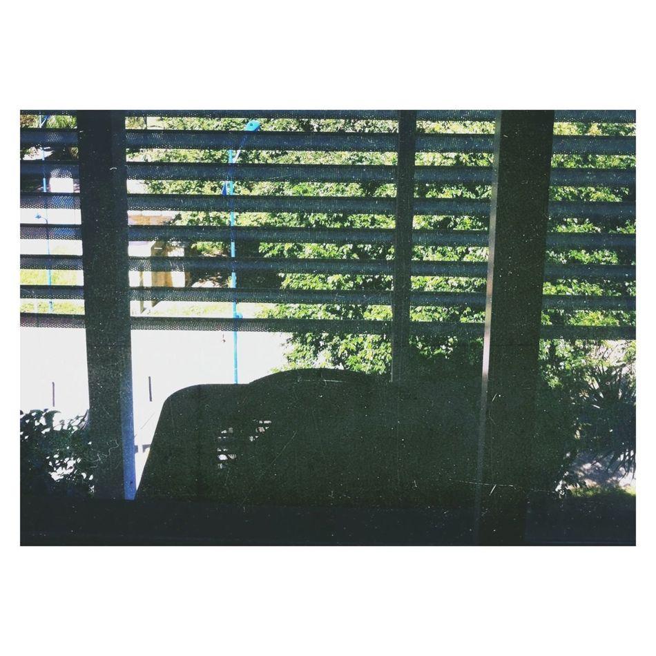 Pela janela.