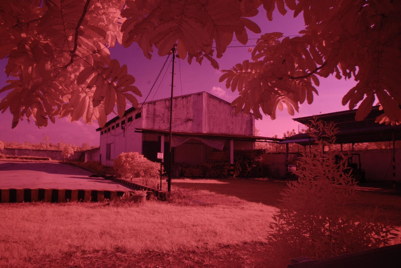 Playing with Infra Red False Color Photography
