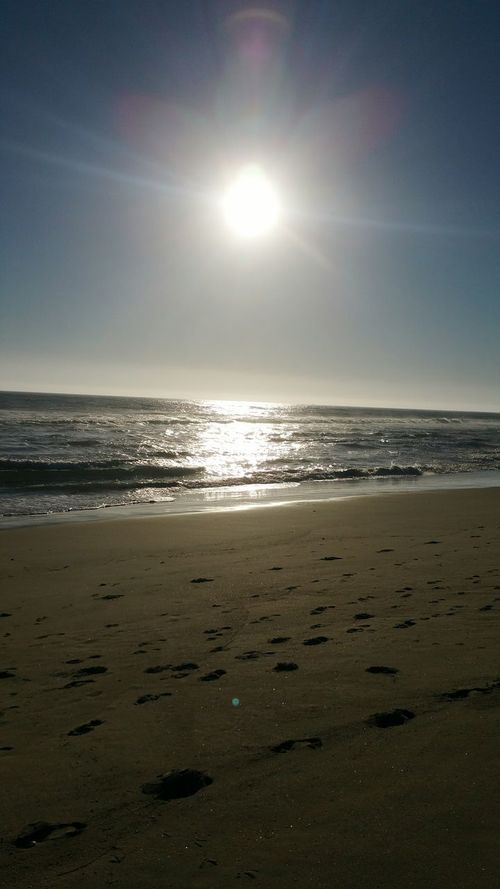 Beach Sea Sun Water Horizon Over Water Scenics Tranquil Scene Sunlight Shore Majestic Nature Seascape Niburu Cross Incoming System Solar Jesus Saves Deception Contact Disclosuremovement Binary Stars Moons Vision Secondcoming#nofilter