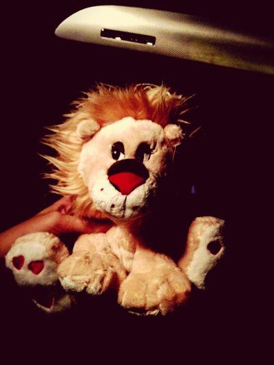 Lion Love Hearts
