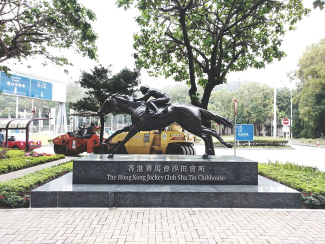 HongKong Jockeyclub Jockey Club Statue Horse Man Riding Tree Shatin Streetphotography Equine Hospital Speed Road Roller Roadroller Black Clubhouse Road Sign Signage