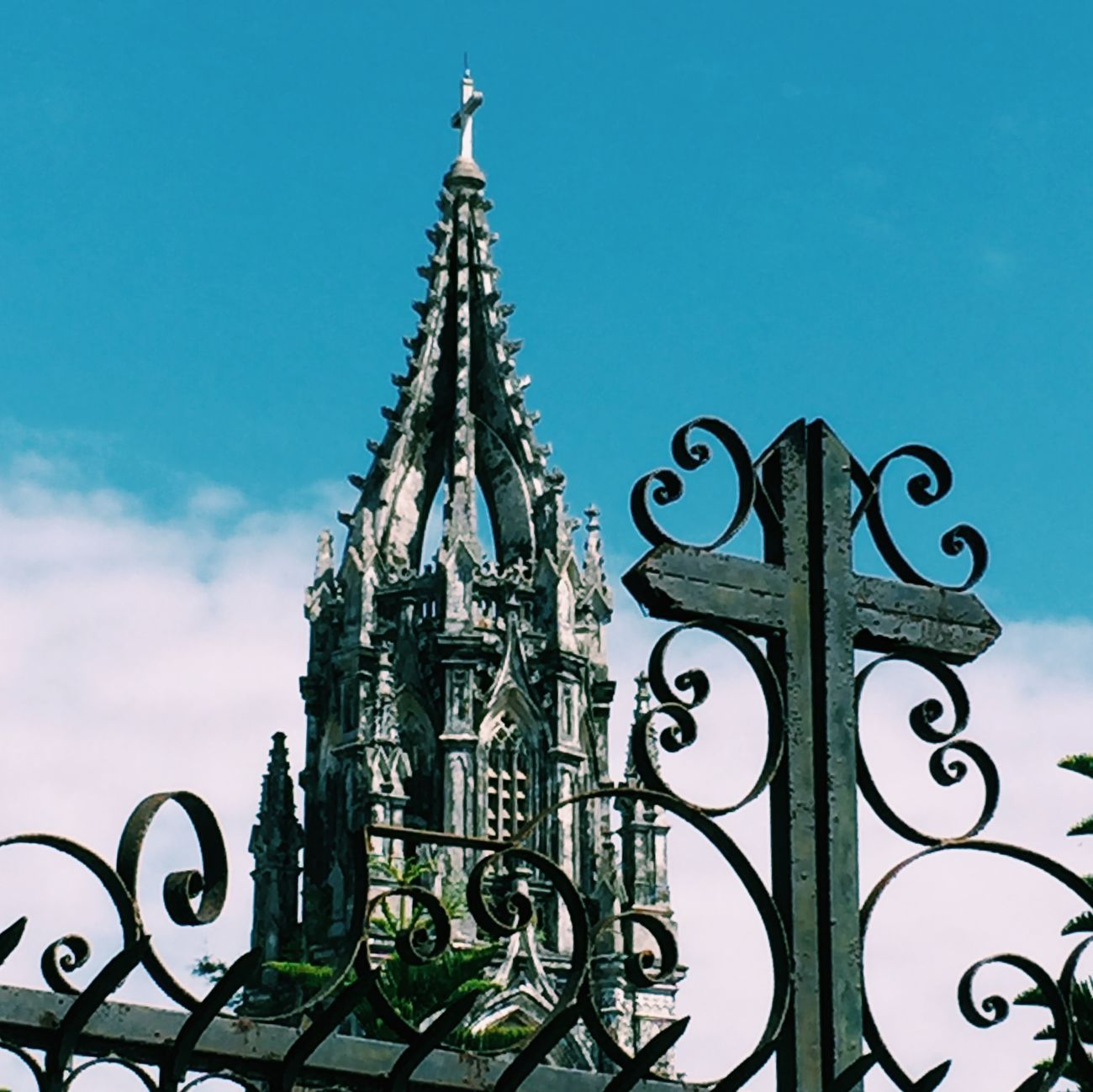 教堂 越南 Vietnamese 手机摄影 天空 蓝天