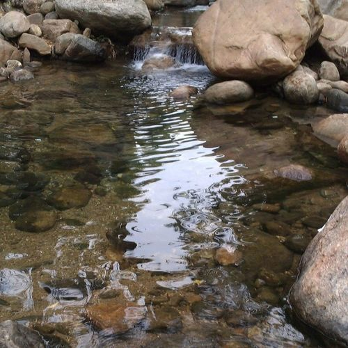 Nature Photography near Rajapalaiyam Forest adventure waterfall in summer