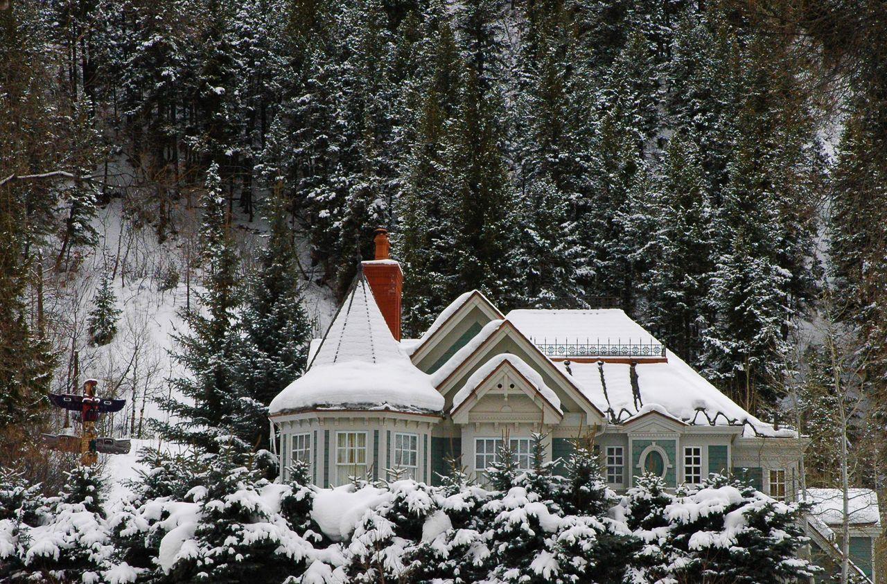 Aspen Dream Home Aspen Aspen, Colorado House Snow Totem Pole Winter Winter Home Winter Scene