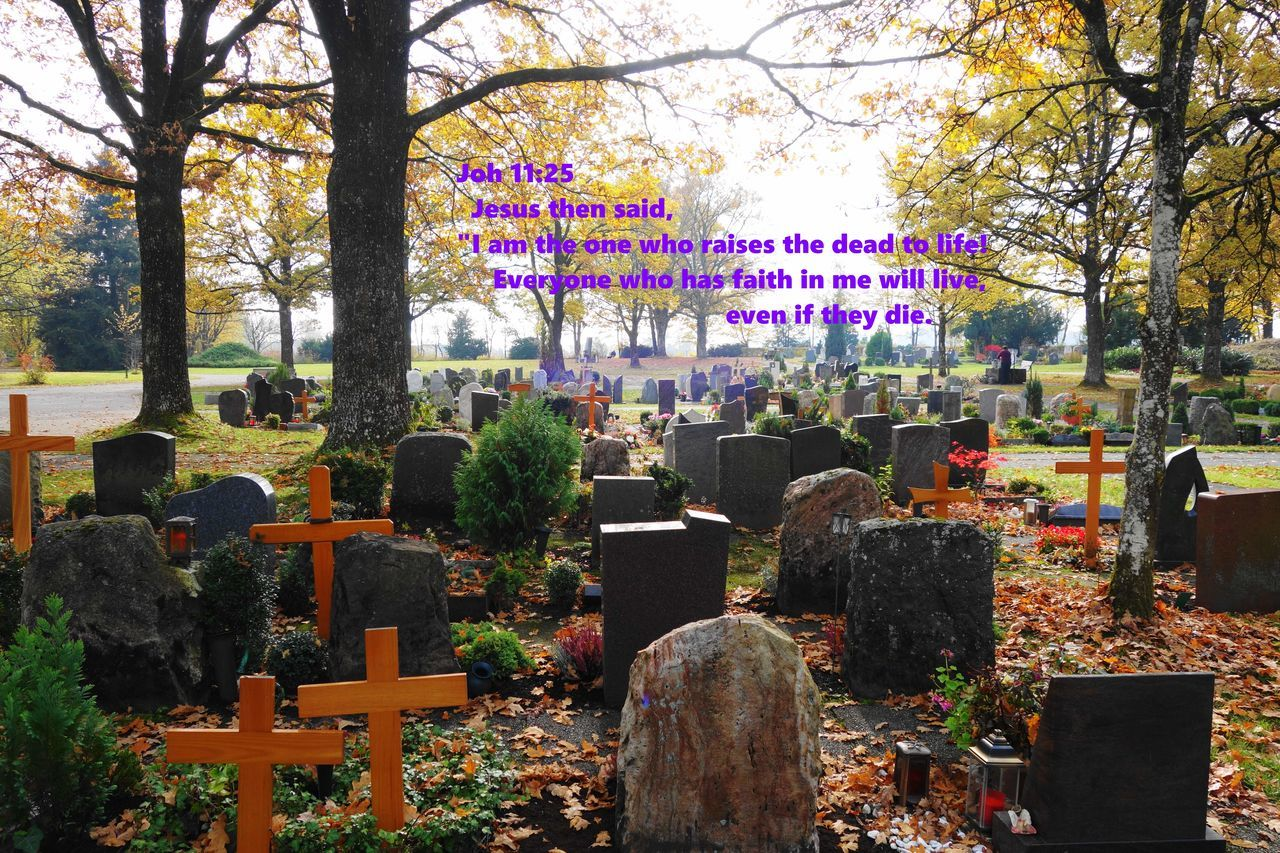 "Joh 11:25 Jesus then said, ""I am the one who raises the dead to life! Everyone who has faith in me will live, even if they die. Bible Change Cross Death Enjoying Life Faith Friedhof Grabstein Graveyard Jesus Leben Life After Death Live Memories Outdoors Park Resurection The End?"