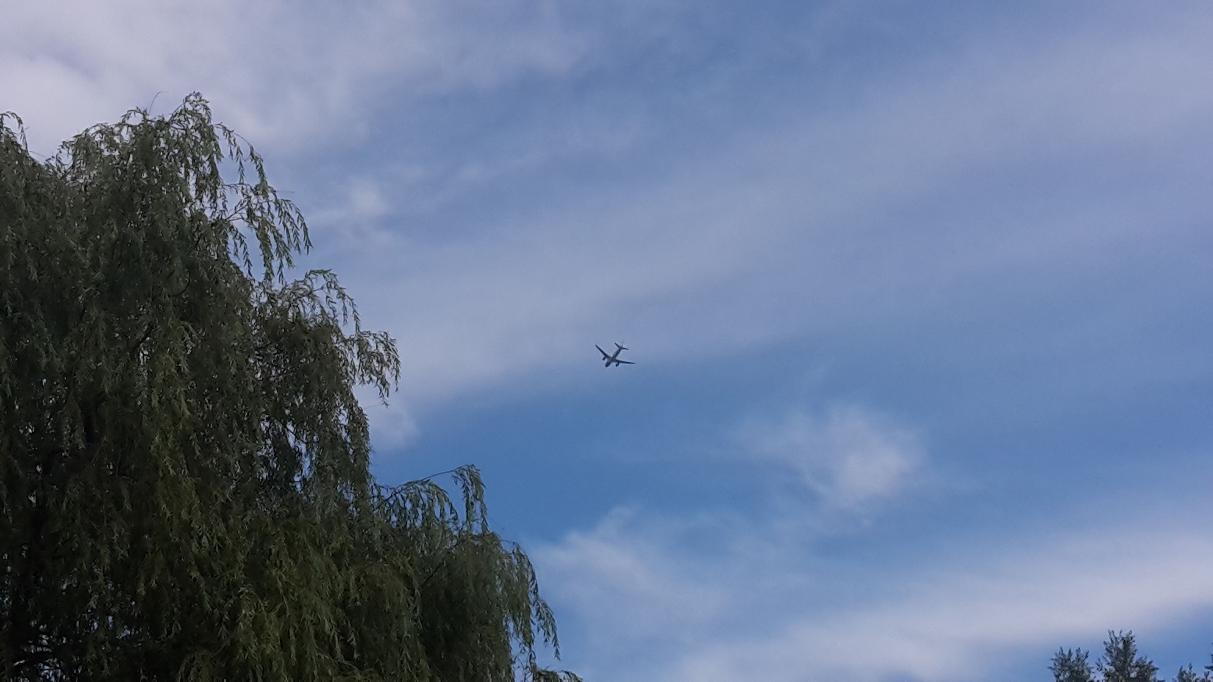 flying, low angle view, airplane, tree, sky, transportation, mode of transport, air vehicle, cloud - sky, mid-air, flight, cloud, scenics, outdoors, day, nature, tranquil scene, journey, tranquility, treetop, no people, beauty in nature, cloudscape