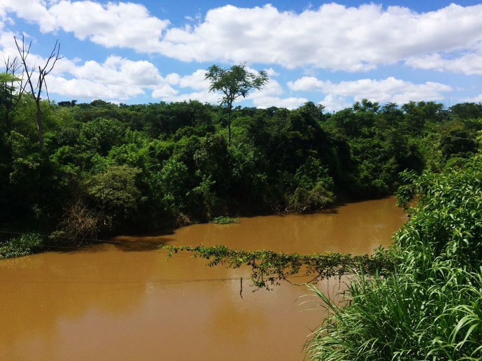 River Rio Landscape Nature Brazil Brasil Brazilian Nature Beauty In Nature Green Color Tranquility Forest Mata Atlântica Sky Tree Outdoors Brasilnature Brazilian Gallery South America Brazil Natural Beauty