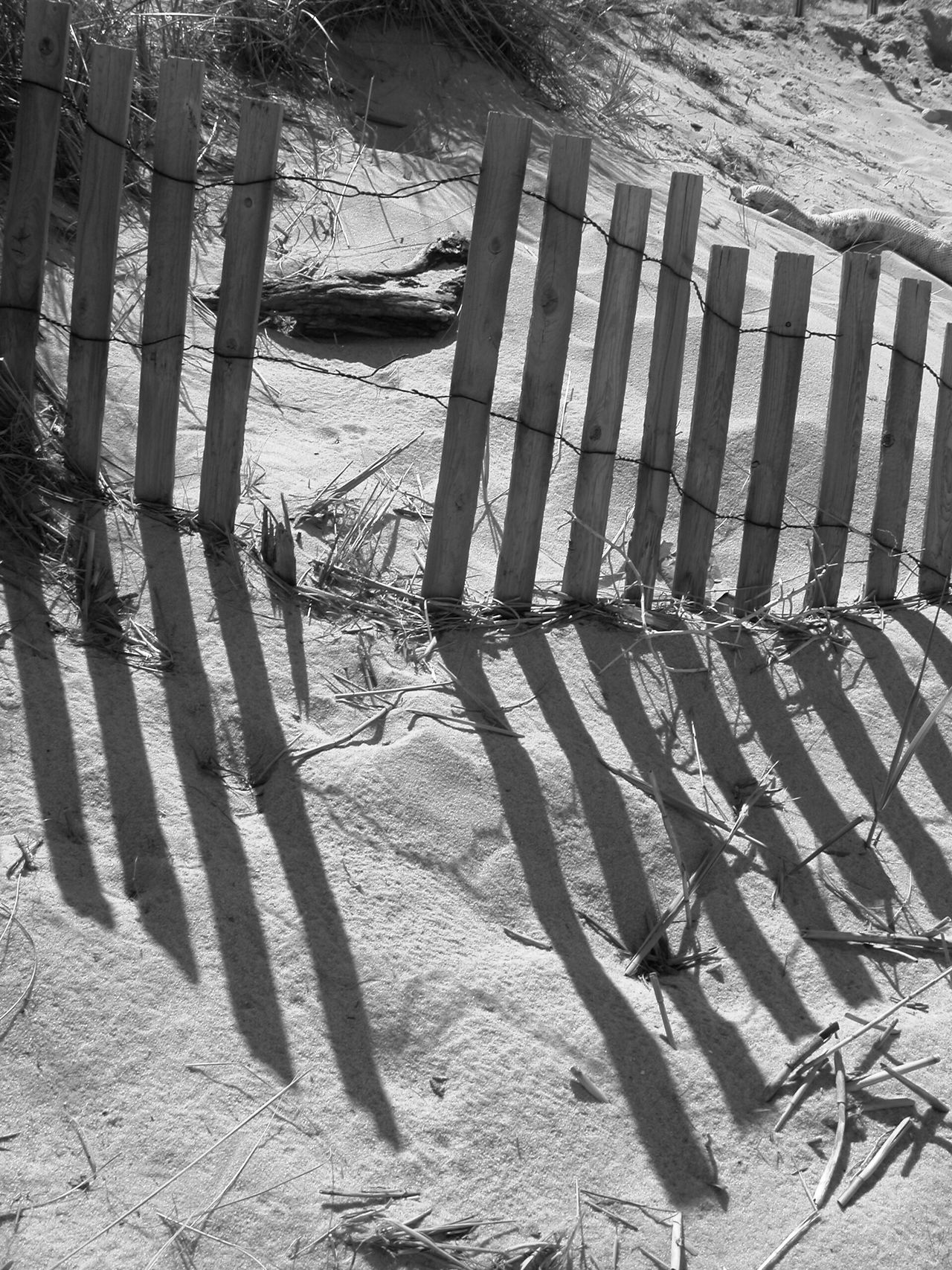 Sunlight No People Outdoors Day Picket Fence Beach Close-up Nature