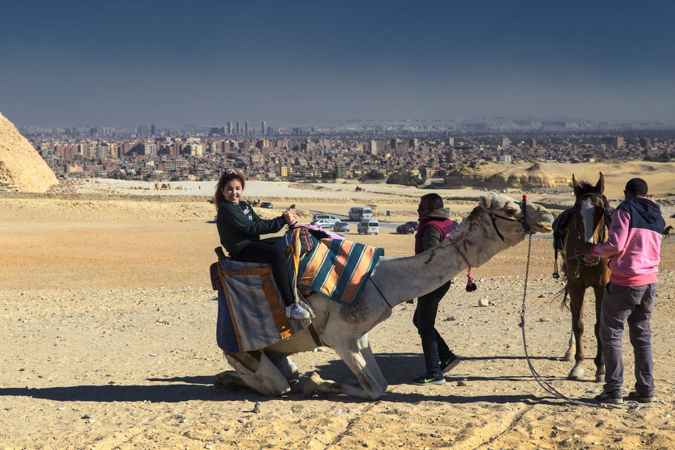 Cairo Cairo Egypt Camel Riding Camel Sitting Do Cityscape Egypt Giza Giza Pyramids Giza, Caïro, Egypt Riding A Camel Travel Destinations