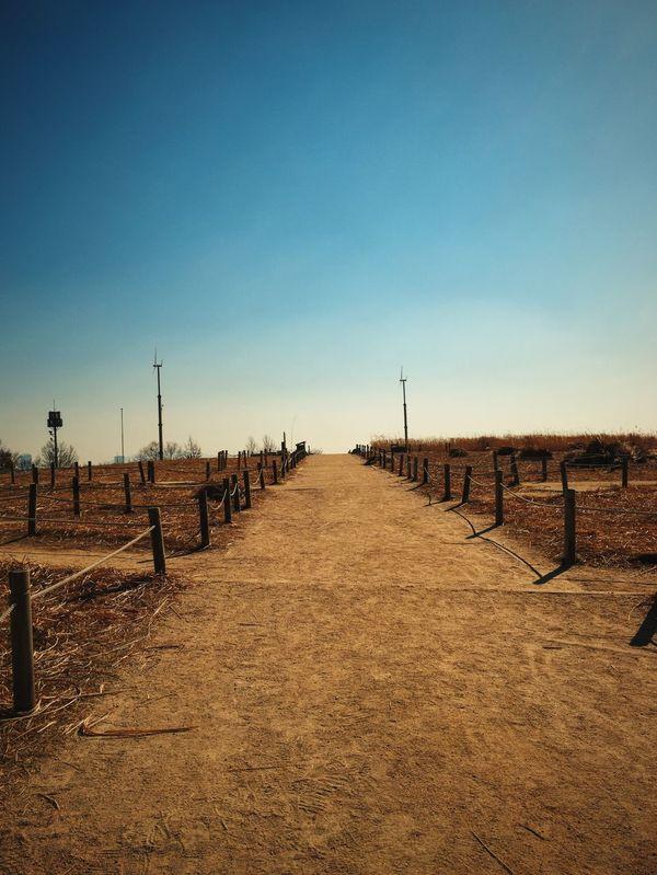 Road Reeds End Of Line
