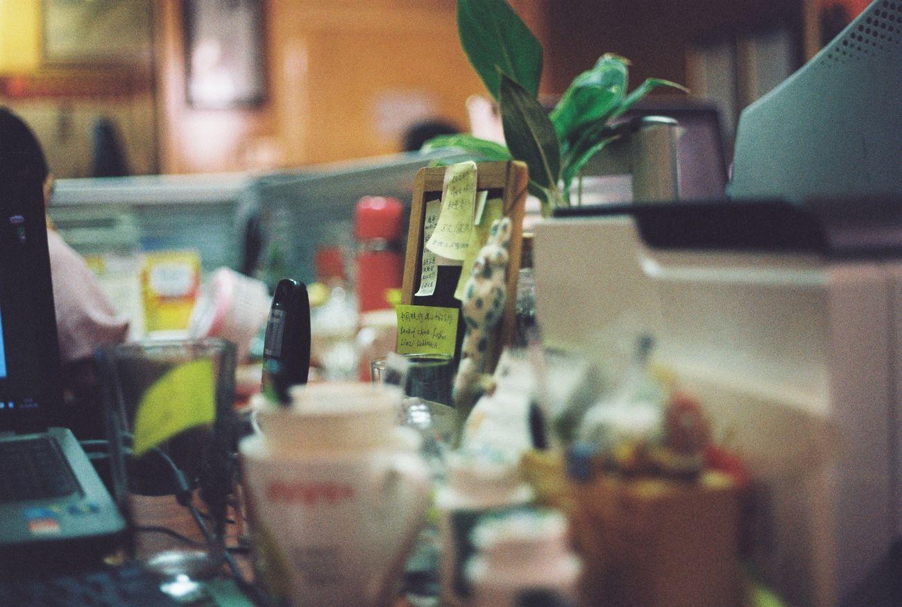 Chemistry Biscuit Flimcamera Green