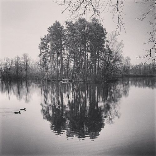 Iglifecz_reflection Iglifecz Igerscz Igraczech ig_europe europe_gallery photowall_bw photowall photowall_nature igmasters reflection nature 16oftheweek premiumposts the_visionaries vscocam