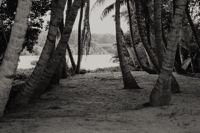 Blackandwhite Black And White Black And White Photography Blackandwhite Photography Blackandwhitephotography BlackandwhiteMH Black&white Beach Landscape Angola