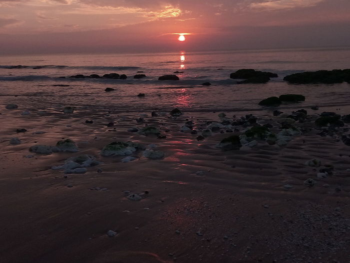 Sunset Beach Sun Landscape Sea Sand Reflection Vacations Low Tide Silhouette Red Outdoors Water Travel Destinations Tourism Travel Summer Horizon Over Water Sunlight Liquid Sunrise Sunlight Sky Beauty In Nature