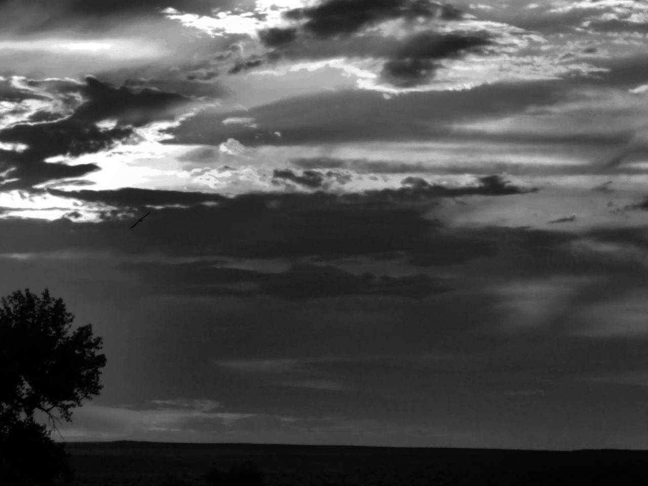 sky, cloud - sky, nature, tranquility, scenics, tranquil scene, beauty in nature, silhouette, no people, landscape, outdoors, tree, storm cloud, day
