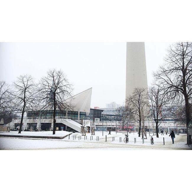 Winter Wonderland Winter Trees Wintertime New Berlin TV Tower Spectrals Of Real Socialism Urban Landscape Urban Geometry Urban Lerone-frames Streetphotography Streetphoto_color Berlin-Mitte Winter Winterscapes Lerone-doc White Album