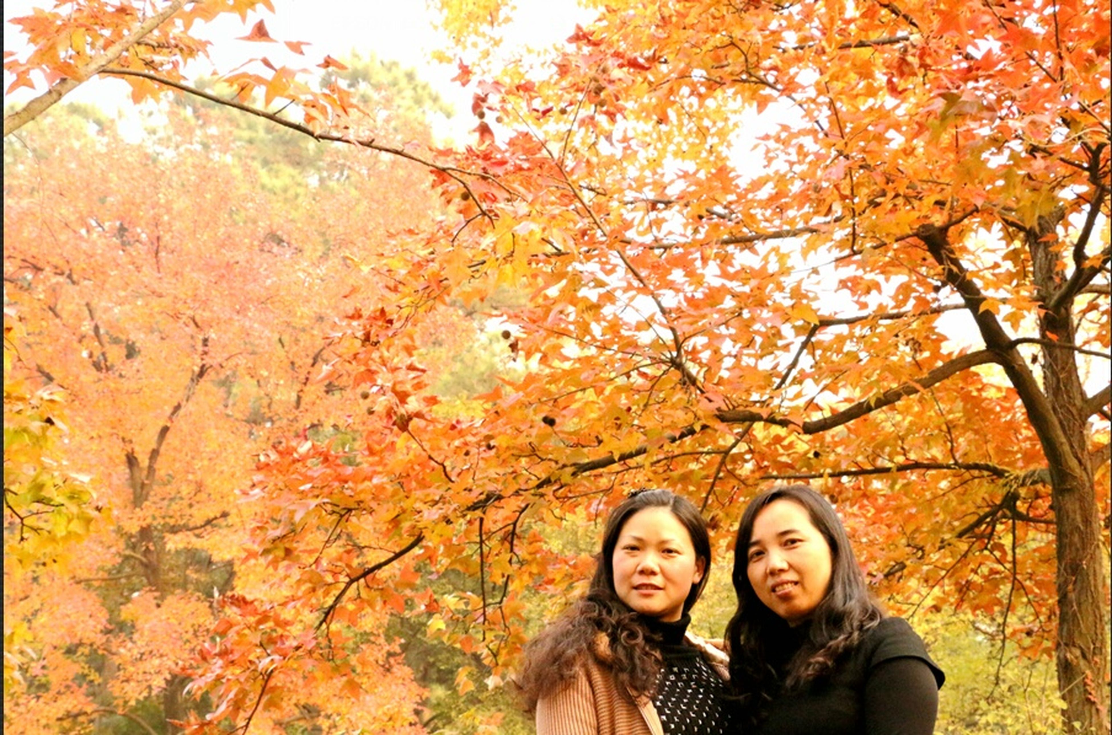 Darkness And Light In Late Autumn The Two Women