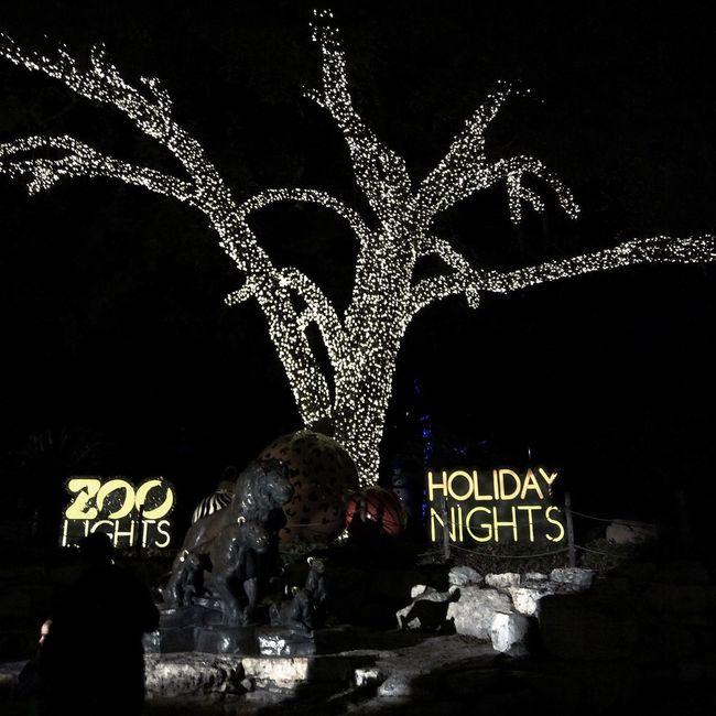 Zoo Lights Holiday Nights! 2015 Brackenridge Park San Antonio Zoo