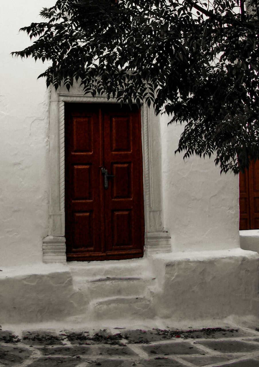 architecture, built structure, building exterior, tree, door, house, no people, winter, outdoors, day, snow, growth, nature, branch