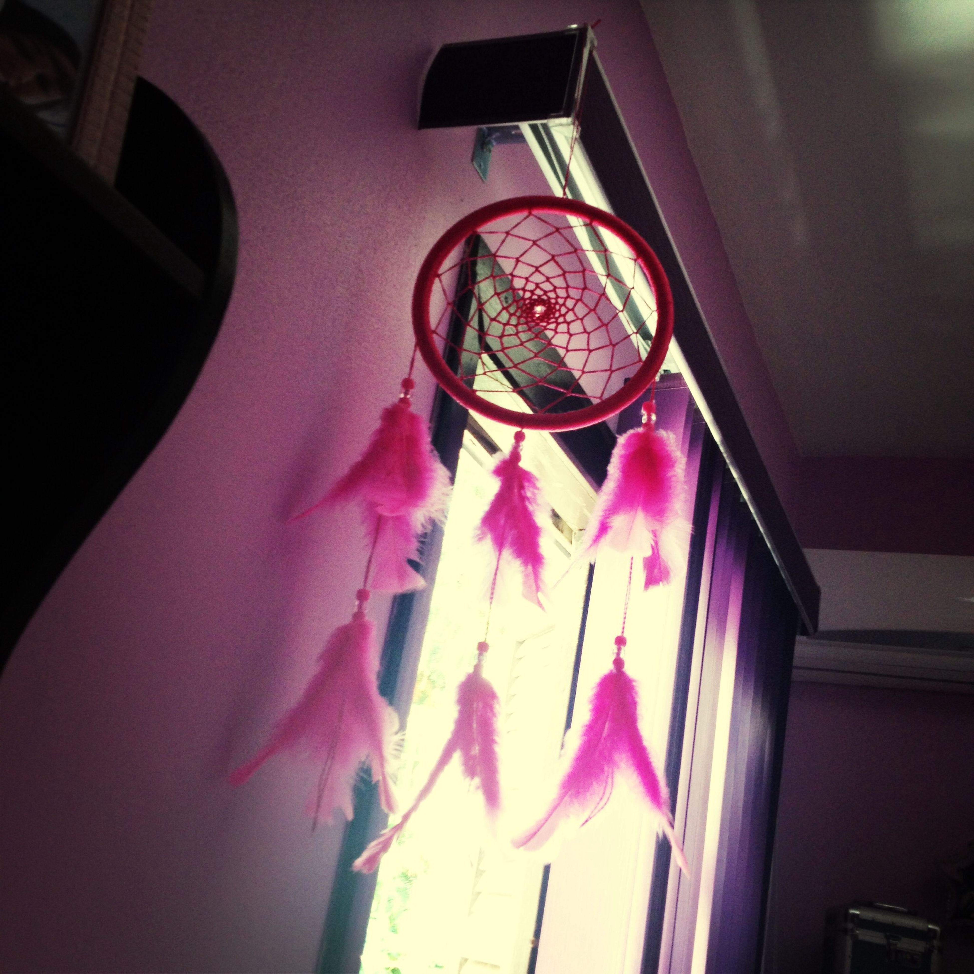 indoors, glass - material, close-up, window, flower, transparent, reflection, hanging, pink color, home interior, decoration, still life, no people, table, focus on foreground, day, low angle view, freshness, glass, fragility