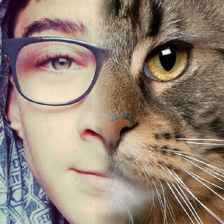 Instaface Cat Eyes Uglie 151 instacut instamood demigod tribute shadowhunter fb