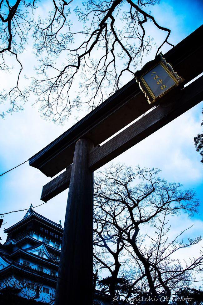 八坂神社 小倉城 Japanese Style Japan Photography Japanese  Japan 神社