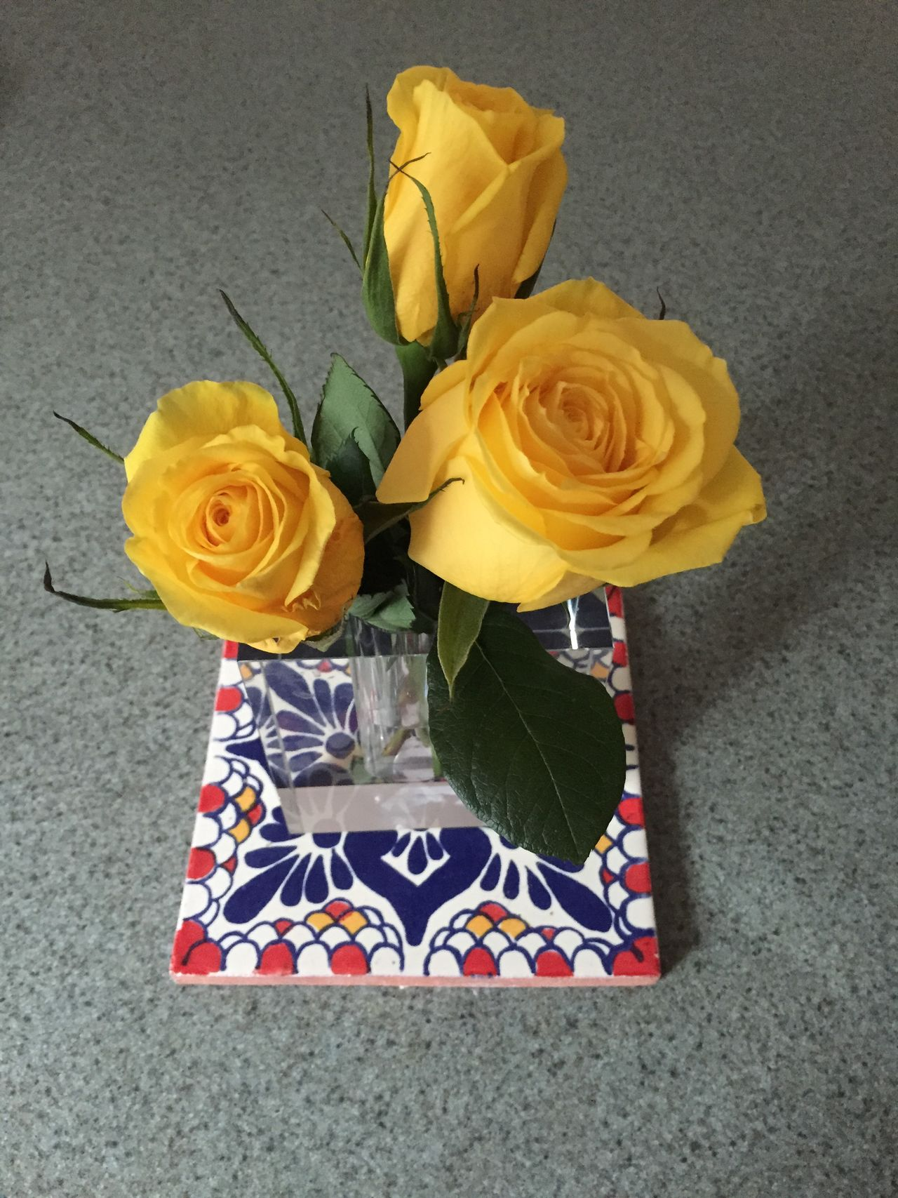 Close-up Flower Gift High Angle View Petal Vase Yellow