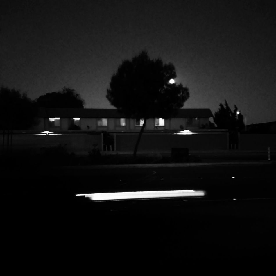 Wolf Larsen - if I be Wrong. Tree Dark Moon Night Black And White All The Small Things Minimalism Quietude