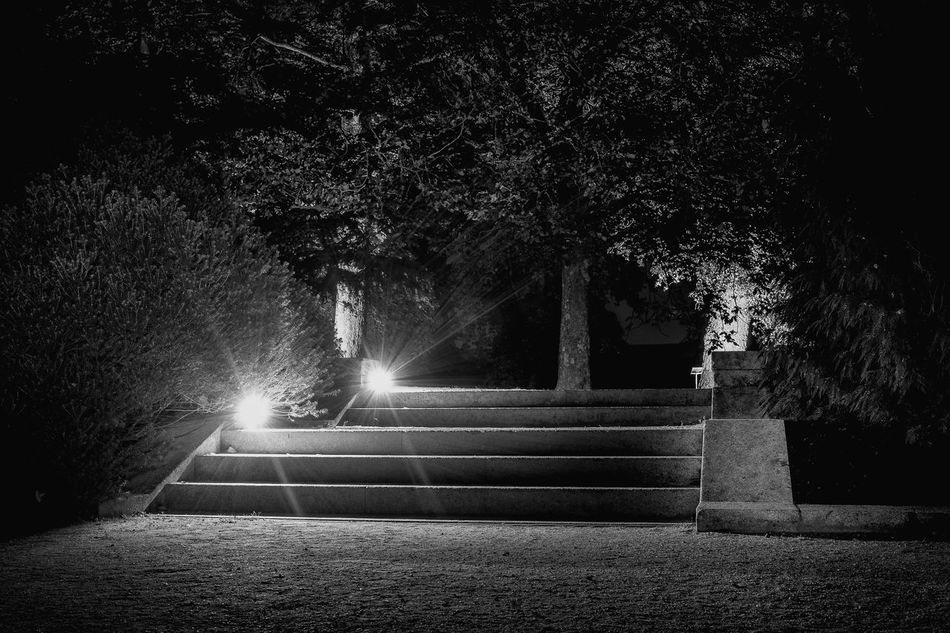 The path Architecture Built Structure Horizontal Illuminated Monochrome Photography Night No People Outdoors Staircase Steps Tree