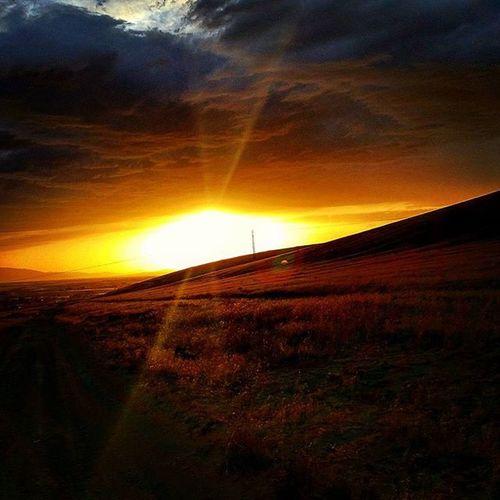 Nevada Nevadasunset Desertlife Winnemucca Winnemuccanv Northennevada Lovethedesert Desertlove Sunset Desertsunset Explorenevada Realnevada Prettygoodtoday Todaywasagoodday