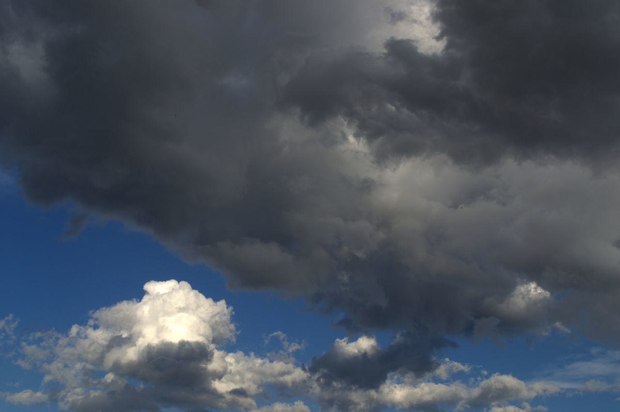 cloud - sky, beauty in nature, sky, nature, low angle view, tranquility, scenics, sky only, cloudscape, atmospheric mood, weather, backgrounds, tranquil scene, day, no people, full frame, blue, outdoors