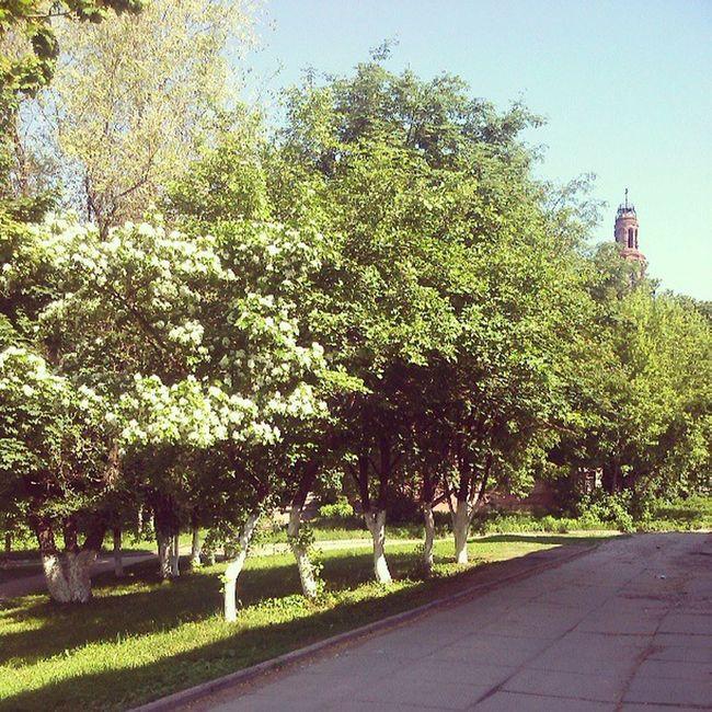 лепота Природа Russia