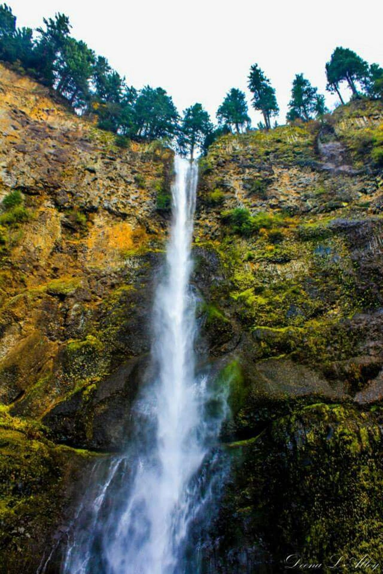 Waterfall Oregon Multnomah Falls  Perspective