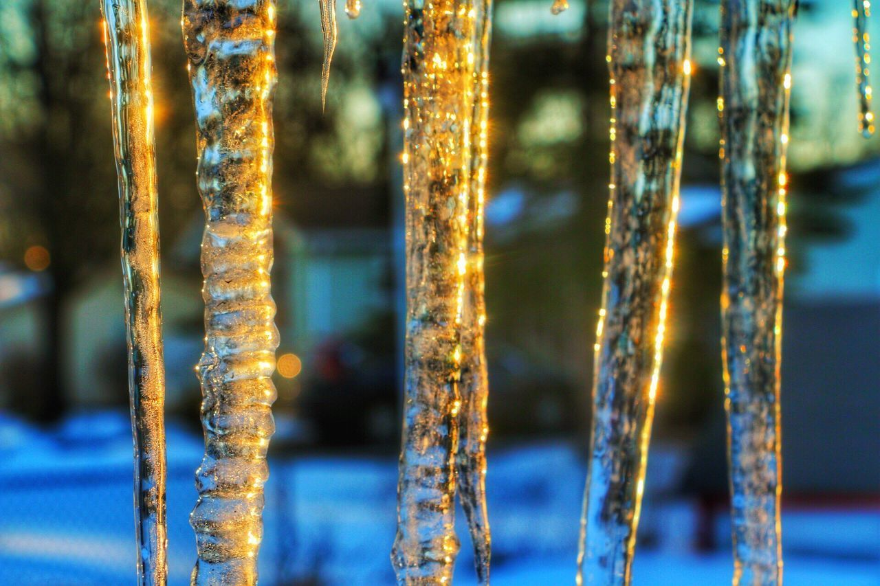 Close-up Gold Colored Focus On Foreground No People Crystal Shiny Gold Outdoors Backgrounds Day Ice Icicles Sunset