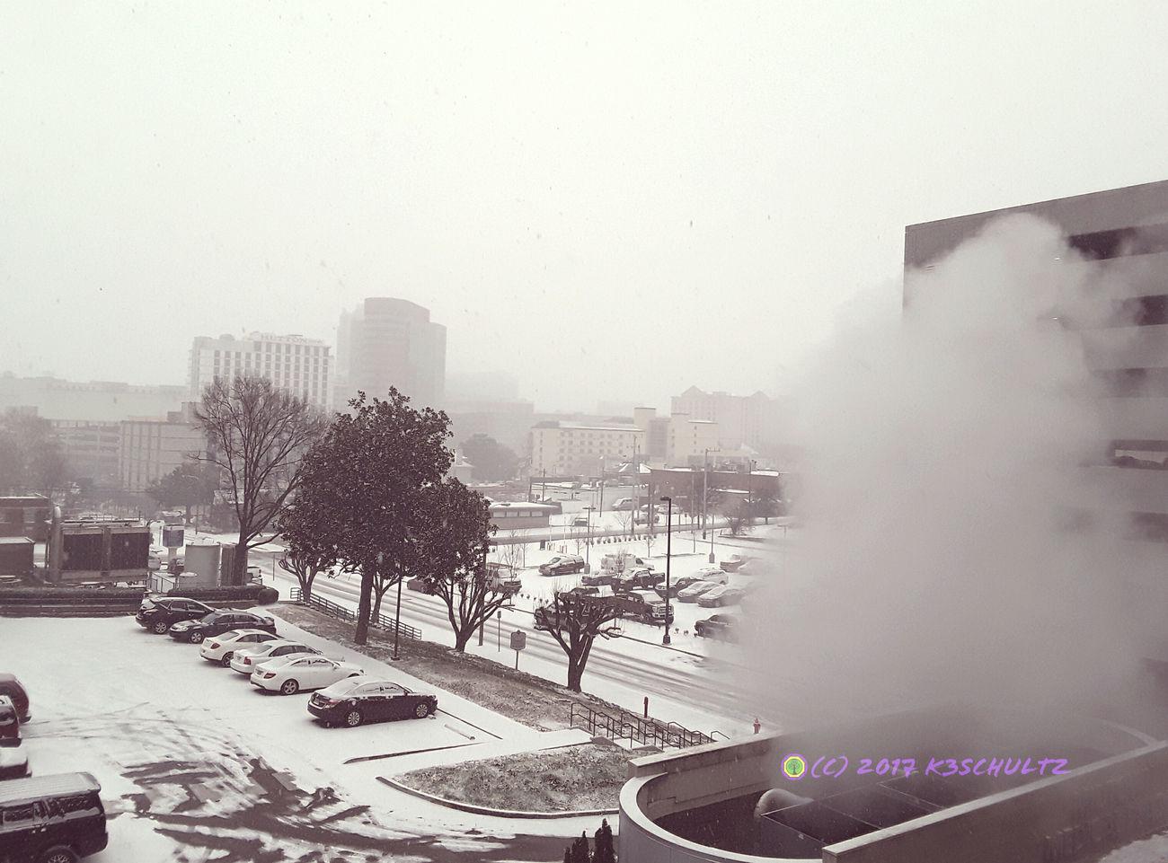 Day 6: Snowpocalypse 365DaysOfAwesomeness PhotographyProject Nashville Day 6 Weather Snow ❄