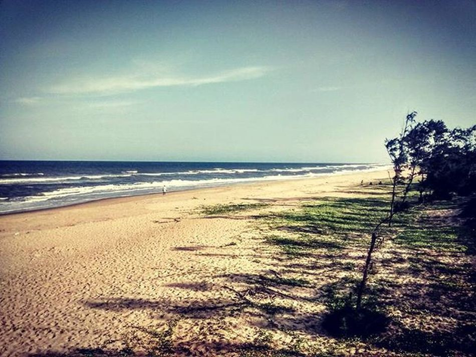 All my life I never had a chance to witness an empty beach which could embrace my solitude this much. Didn't have words to express it then nor do I have it now. Kalpakkam Kalpakkambeach Beachesofindia Madrasatomicpowerstation Maps Ncipl IndustrialVisit Emptybeach Solitudeisbliss Incredibleindia