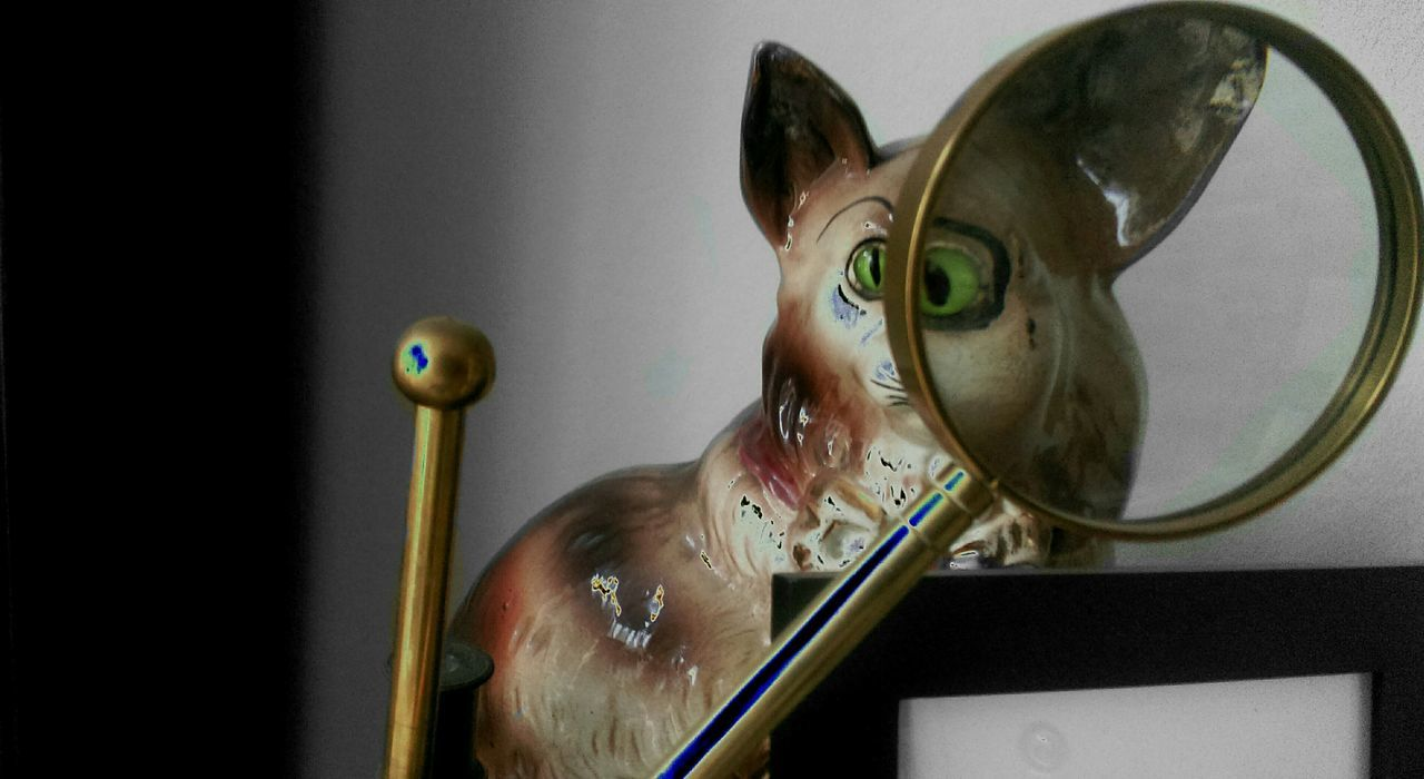 Magnifying Glass In Front Of Cat Figurine Face