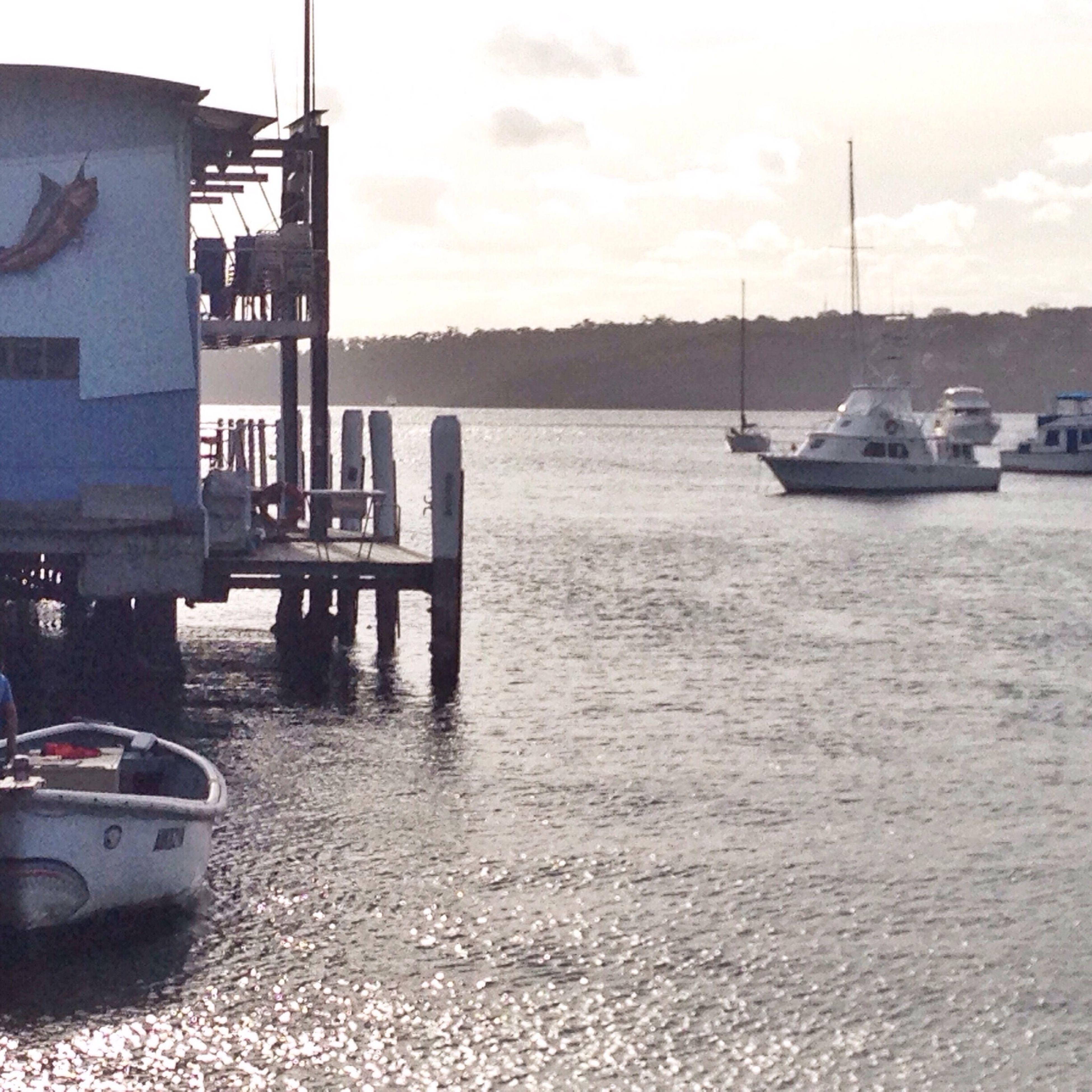 Boat Sydney Summer
