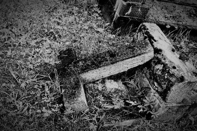 Nikon Nikonphotography Nikon D3300 Black And White Lostplaces Lost Places Friedhof Grab Fallen Cross Stone Cross Stone Grave Dead Spoky Nature Grass Traveling Forgotten Dead Souls