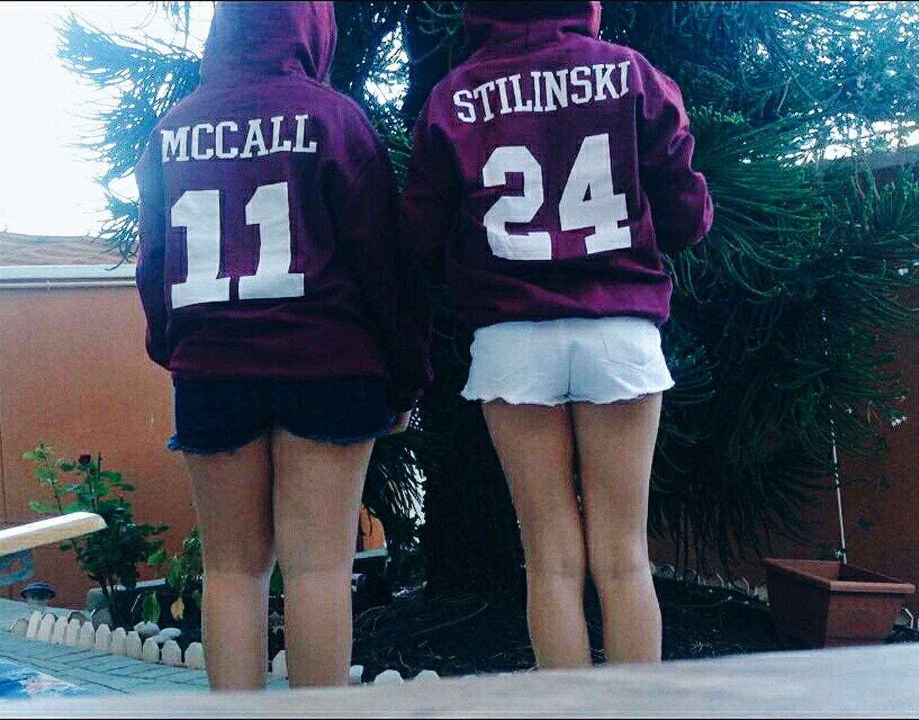 Wolfies. Teen Wolf Mccall Stilinski