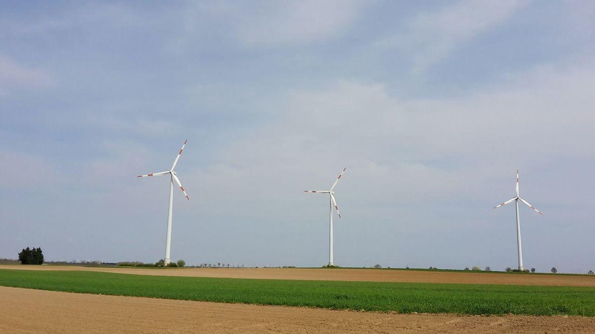 No People Nature Rural Scene Outdoors Cloud - Sky Minfeld Südpfalz Elektricity Elektrizität Landwirtschaft Stromversorgung Windmills Windenergie Windräder Electricity  Wind Power Wind Turbine Alternative Energy Renewable Energy Power In Nature Power Supply BYOPaper! Investing In Quality Of Life