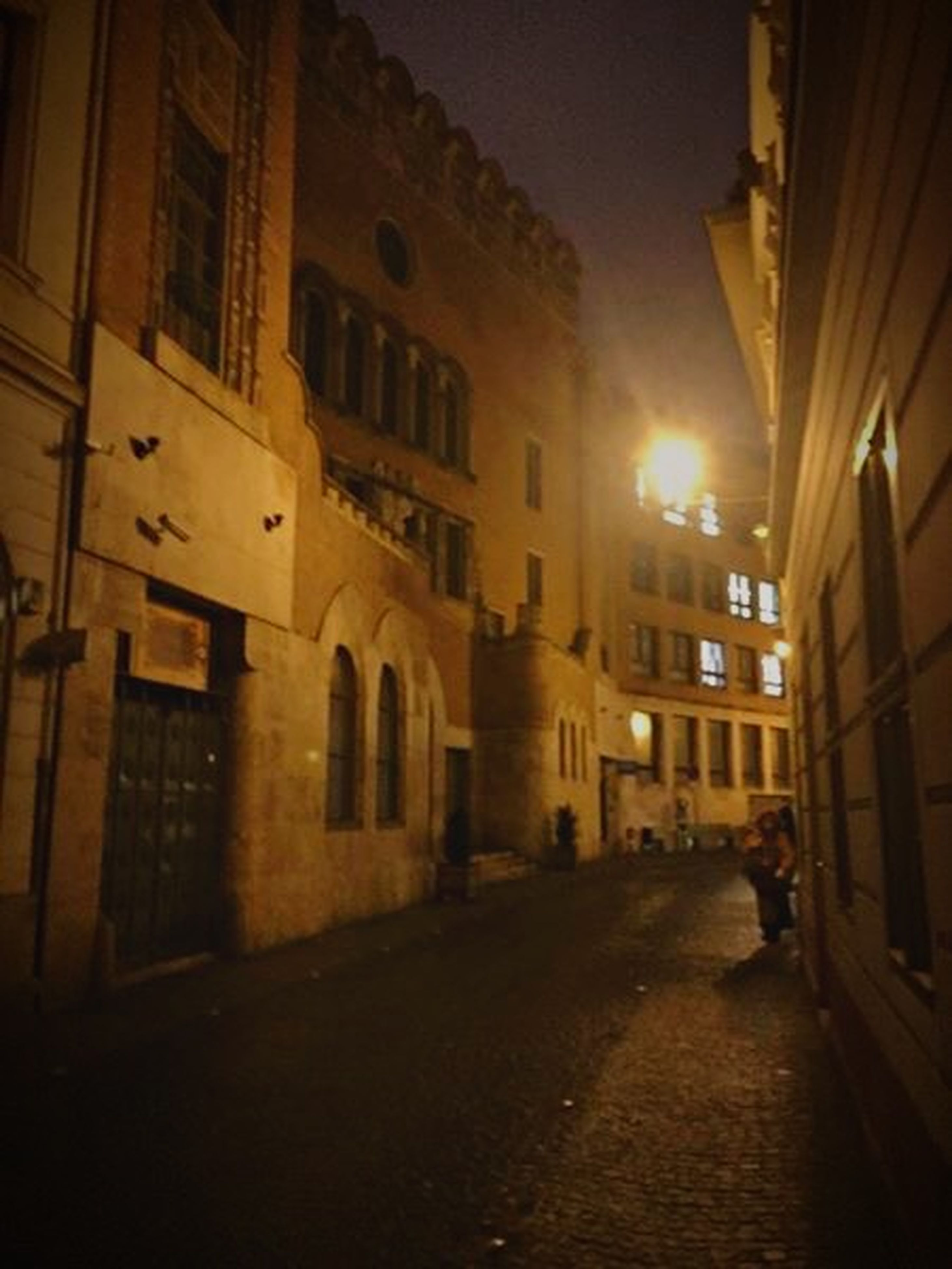 building exterior, architecture, built structure, street, city, the way forward, building, illuminated, residential building, night, residential structure, city life, diminishing perspective, street light, walking, incidental people, alley, cobblestone, city street