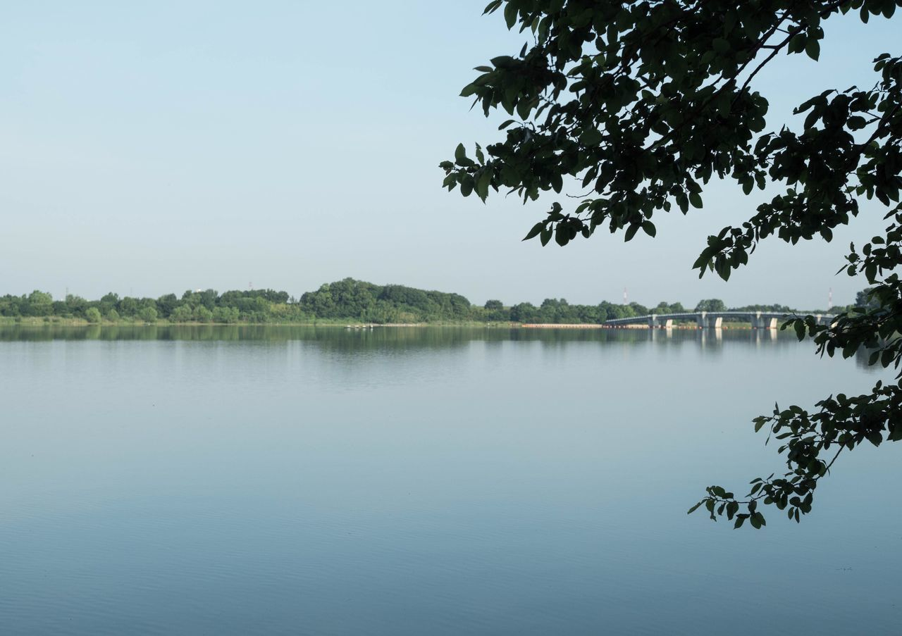 water, reflection, lake, tree, nature, outdoors, tranquility, no people, beauty in nature, sky, clear sky, day